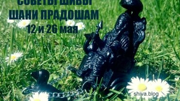 Советы Шивы. Шани Прадошам 12 и 26 мая