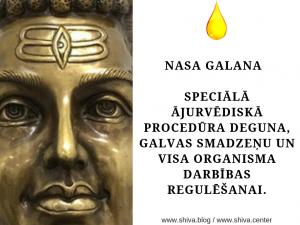 NASA GALANA - SPECIĀLĀ  ĀJURVĒDISKĀ PROCEDŪRA DEGUNA, GALVAS SMADZEŅU UN VISA ORGANISMA DARBĪBAS REGULĒŠANAI